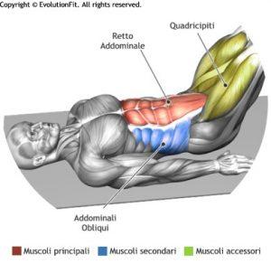 mappa addominali leg knee raise